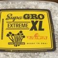 Extreme XL - Golden Teacher