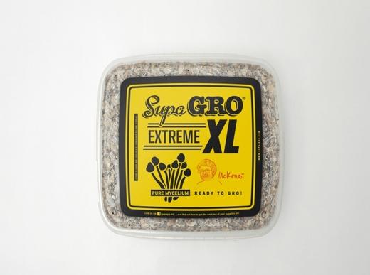 Extreme XL-  Hawaii